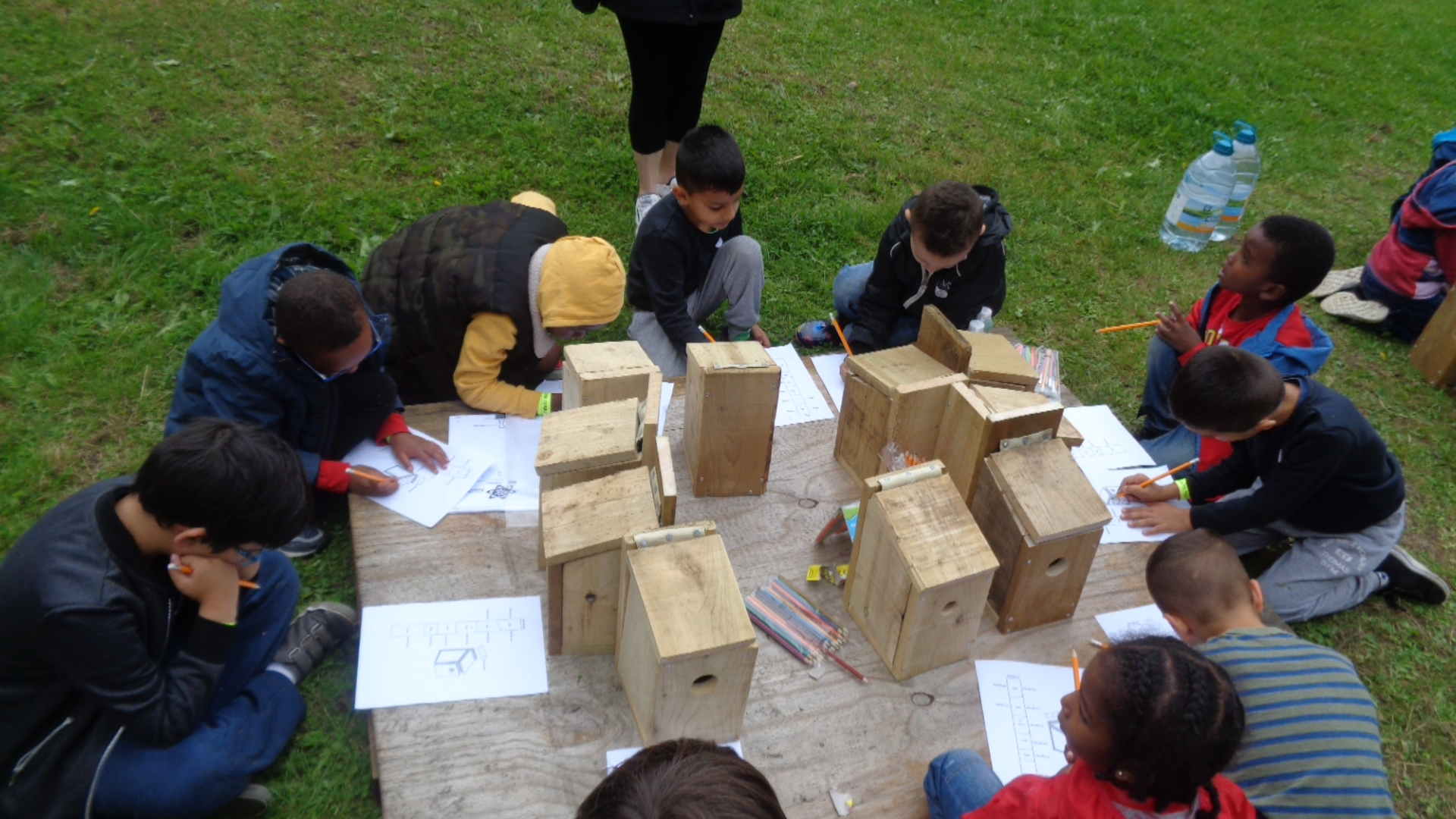 Building Bird Boxes