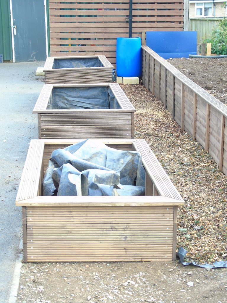 Raised beds for young people to learn new gardening skills
